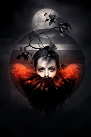 Фото Голова девушки с воротником из перьев в шаре с веточкой и цветами, на фоне Луны и летящей на цветок пчелы, MachiavelliCros DeviantArt Gallery
