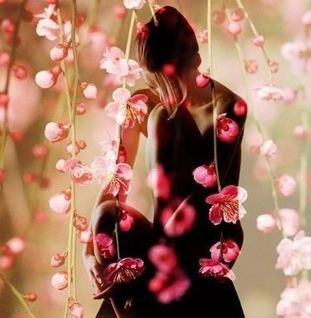 Фото Обнаженная девушка, прижав колено к груди, склонила к нему голову и держит руку возле лица, на переднем плане яркие розовые цветы на тонких ветвях