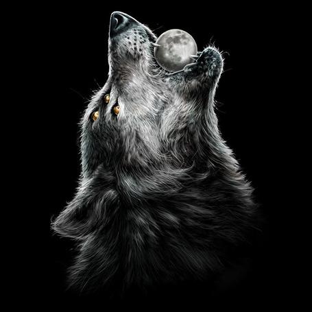 Фото Волк с шестью глазами поднял вверх голову и держит в зубах Луну, by Design-By-Humans