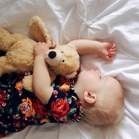 Фото Маленькая девочка спит, обняв плюшевого медведя