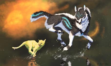 Фото с волком и котом