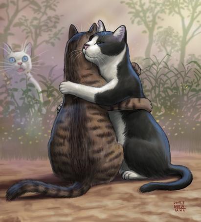 Фото Обнимающиеся котики, by mata taku