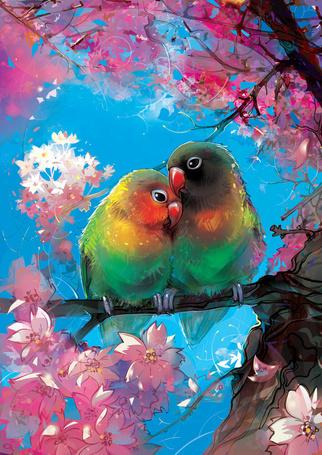 Фото Два попугая на цветущей ветке, автор LimKis