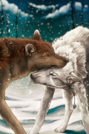 Фото Влюбленные волки, by WhiteSpiritWolf