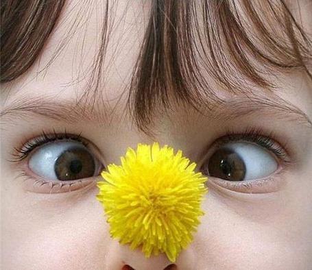 Фото Ребенок свел глаза себе на нос, на котором находится желтый цветок одуванчика