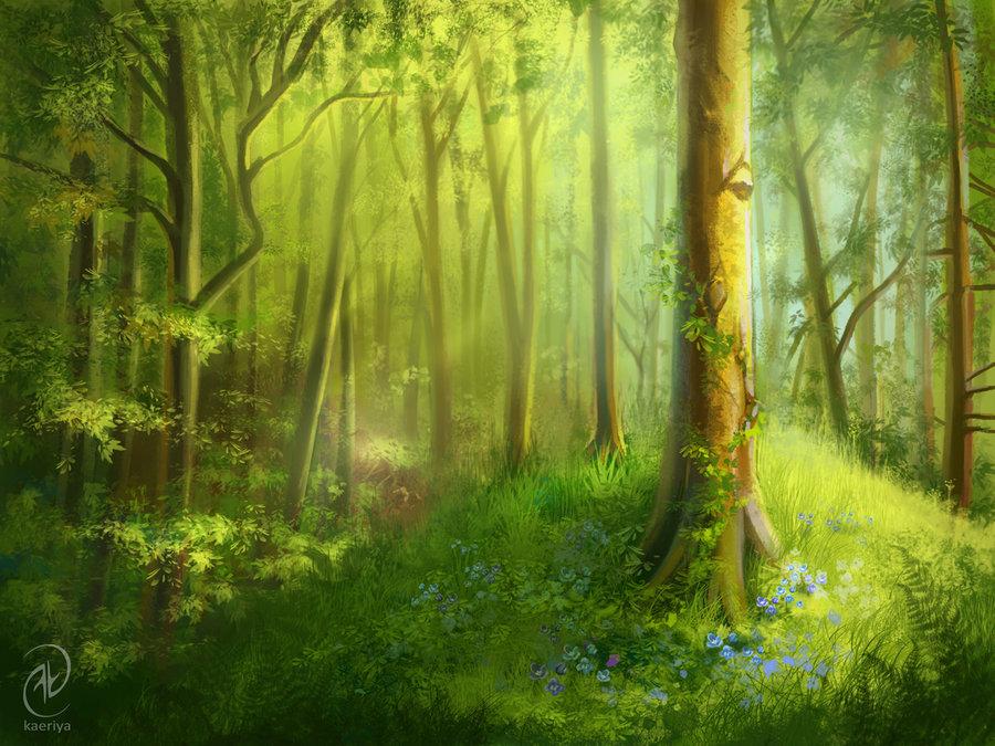 вязка основном, картинки сказочного летнего леса сосна станет