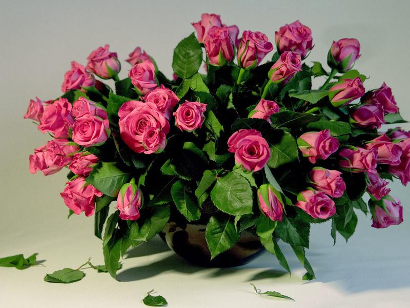 Букет розовых роз с листьями стоящий в вазе