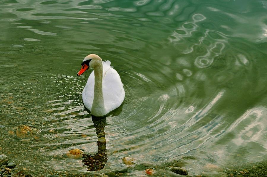 Фото трах на воде176