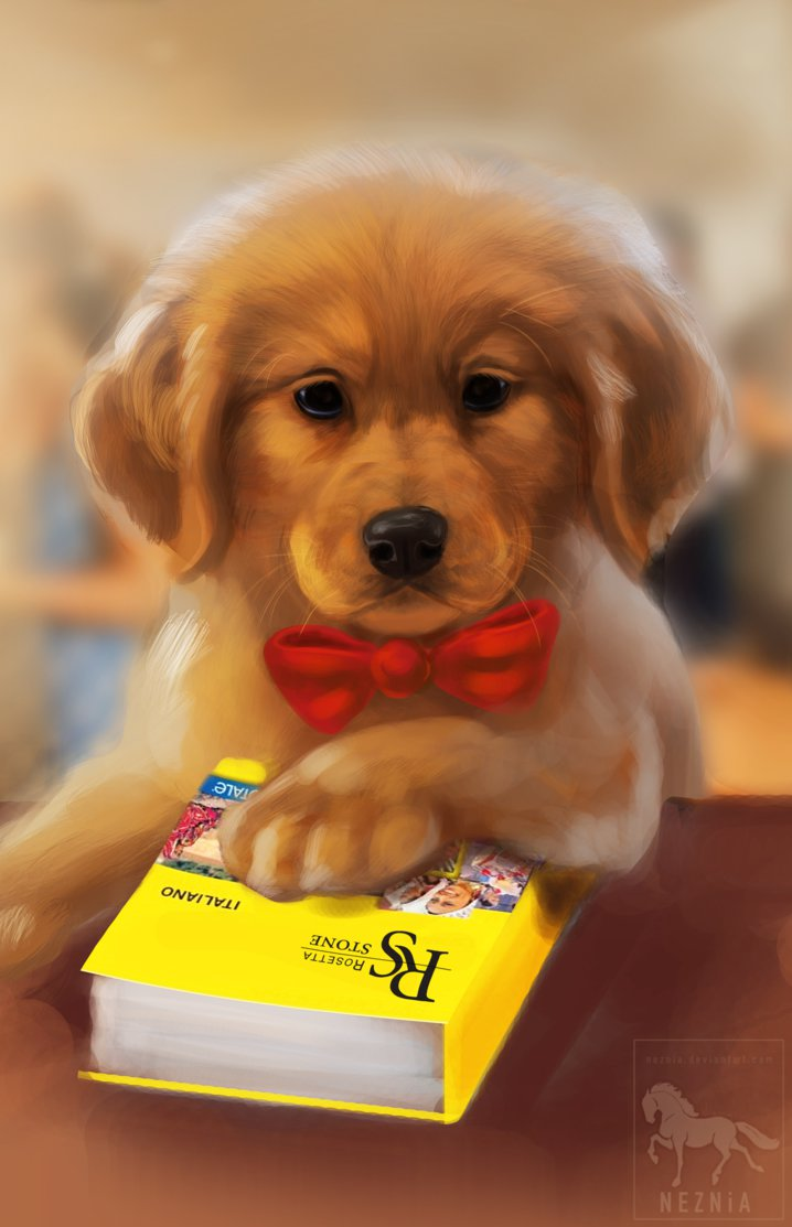 Фото Собака с красным бантиком на шее сидит за столом ...