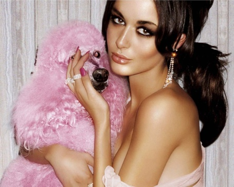 Фото Девушка с собачкой розового цвета
