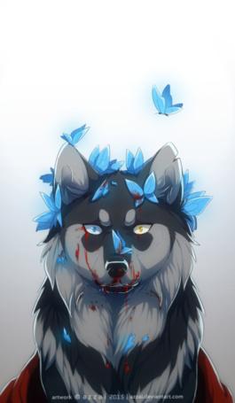Фото Окровавленный волк в окружении голубых бабочек, by Azzai