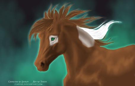 Фото Лошадь с белым пятном вокруг глаза, by Fladius