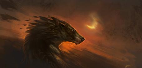 Фото Фантастический волк на фоне неба с луной, by Exileden