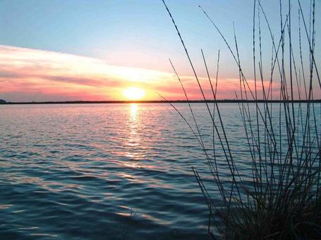 Фото Закат солнца на озере. На переднем плане камыши