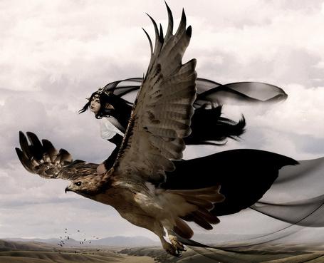 Фото Девушка эльф с длинными черными волосами летит по небу на огромном орле