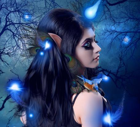 Фото Девушка эльф с голубыми бликами, с павлиньими перьями в волосах, стоит на фоне веток деревьев с попугайчиком на плече