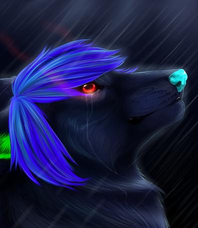 Фото Молодой волчонок с голубыми волосами и красными глазами под струями дождя