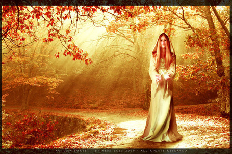 ���� ������� � ������� ���� � ������ � ����� � �������� / AUTUMN FJREST BY NEMI LOSS 2009 ALL RIGHTS RESERVED/ (� qalina), ���������: 23.06.2015 16:50