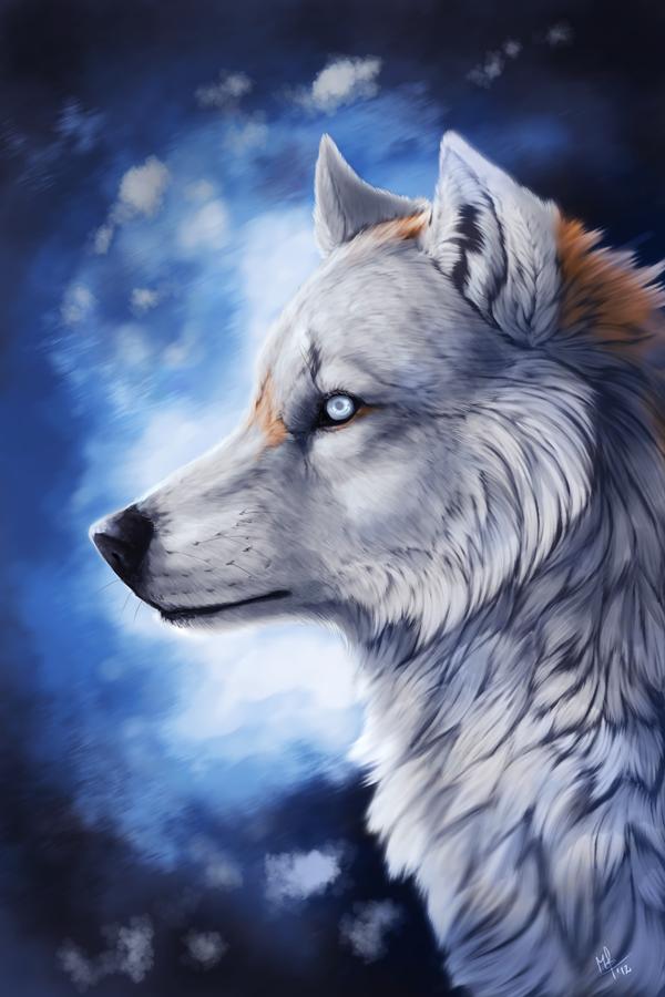 Фото Волк на бело-синем фоне, by Wolf Minori