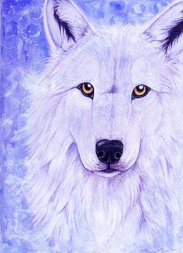 практически всех волки картинки узор как нарисовать рассказываем как проверить