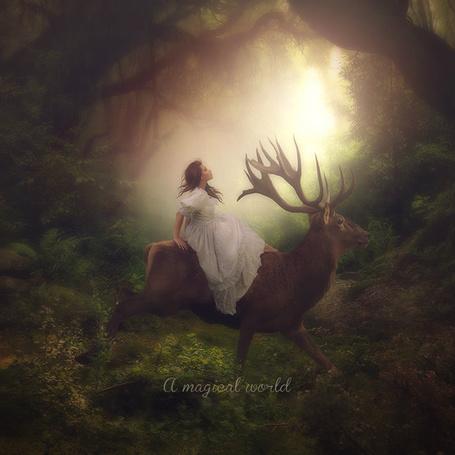 Фото Девушка сидит на олене, by CindysArt