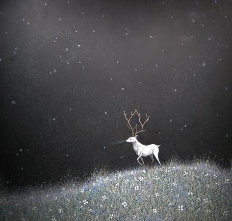 Фото Белый олень стоит в окружении травы на фоне ночного неба, by Scott Belcastro