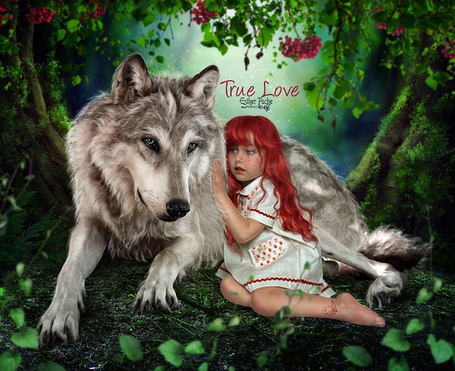 Фото Девочка сидит рядом с волком, true love (настоящая люовь), by EstherPuche-Art