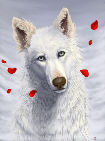 ���� ����� ���� � ������� ����� ������� ��������, by Wolf Minori (� Arinka jini), ���������: 06.07.2015 00:49