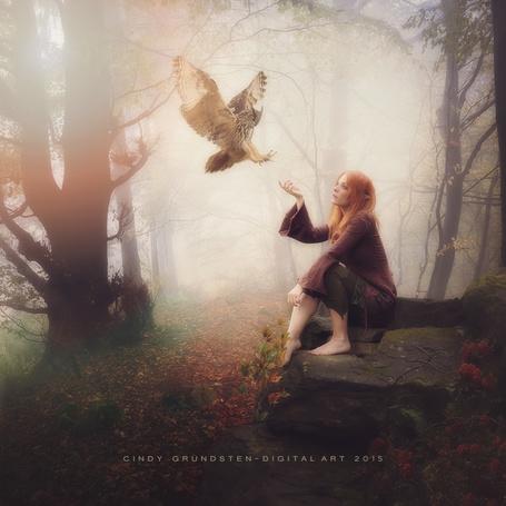 Фото Эльфийка, сидящая на камне, протягивает руку сове, работа CindysArt