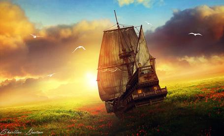 Фото Фантастический корабль в поле с цветами, by CharllieeArts