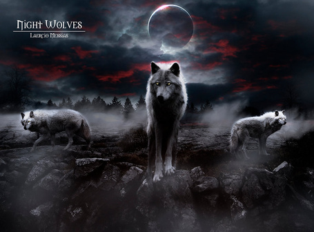 ���� ���� ������ ����� �� ������� ���� �� ���� ������� ���� (Night Wolves), ������ LaercioMessias (� chucha), ���������: 27.07.2015 10:37