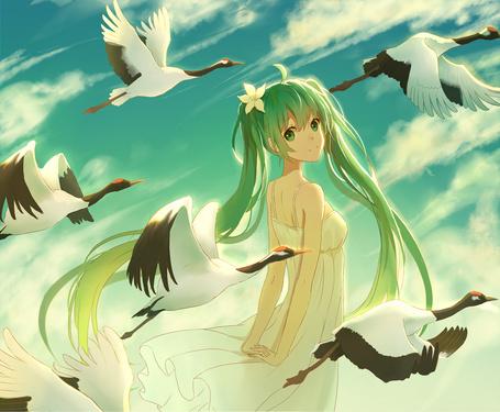 ���� Vocaloid Hatsune Miku / �������� ������� ���� (� chucha), ���������: 28.07.2015 10:23