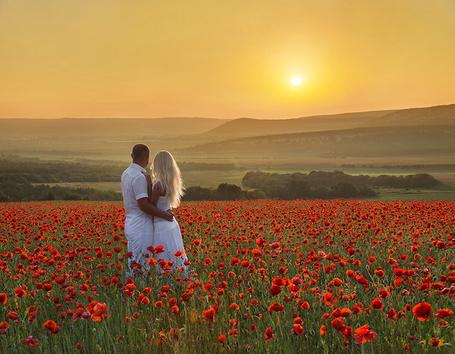 Фото Пара влюбленных в маковом поле