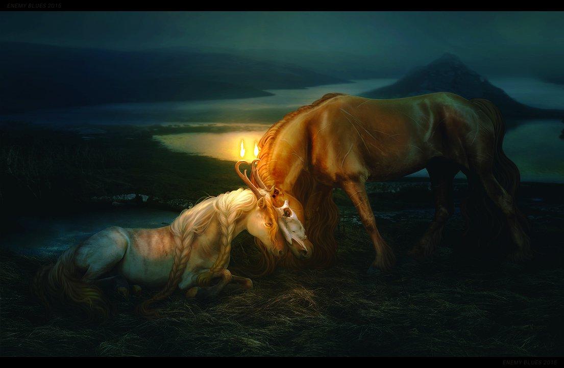 Фото Две лошади на природе, by lunarblues