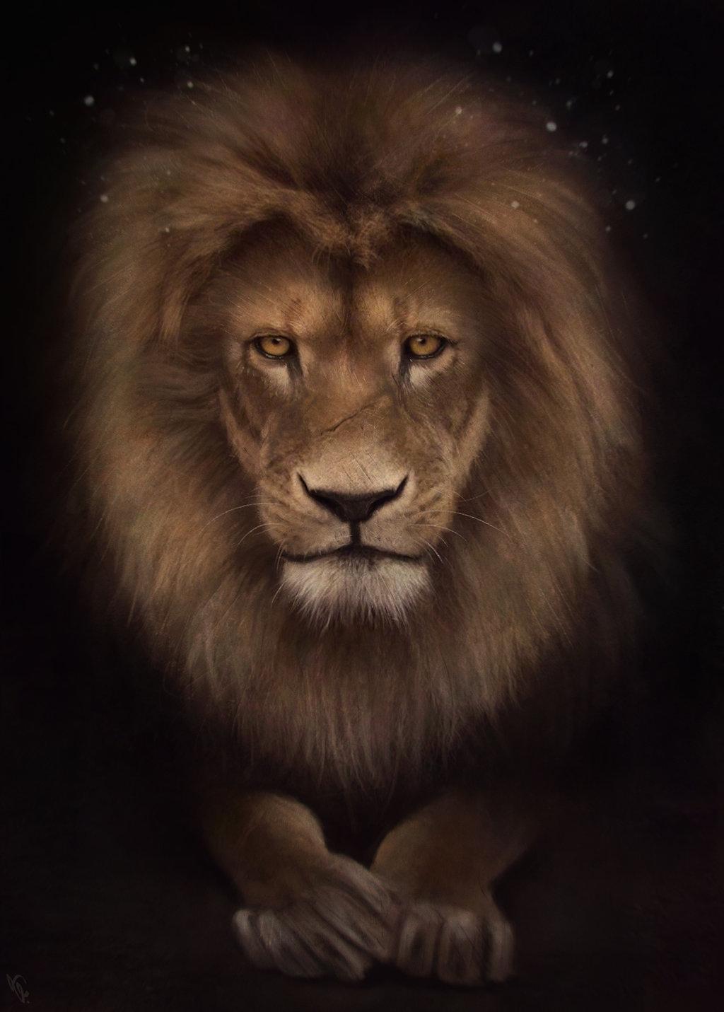 Анимация льва картинки, открыткам фильм 2018