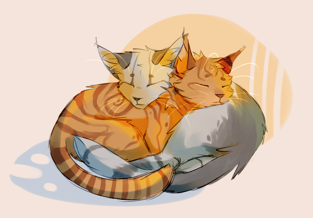 Картинки с обнимающимися котами нарисованные, рождеством прикольное