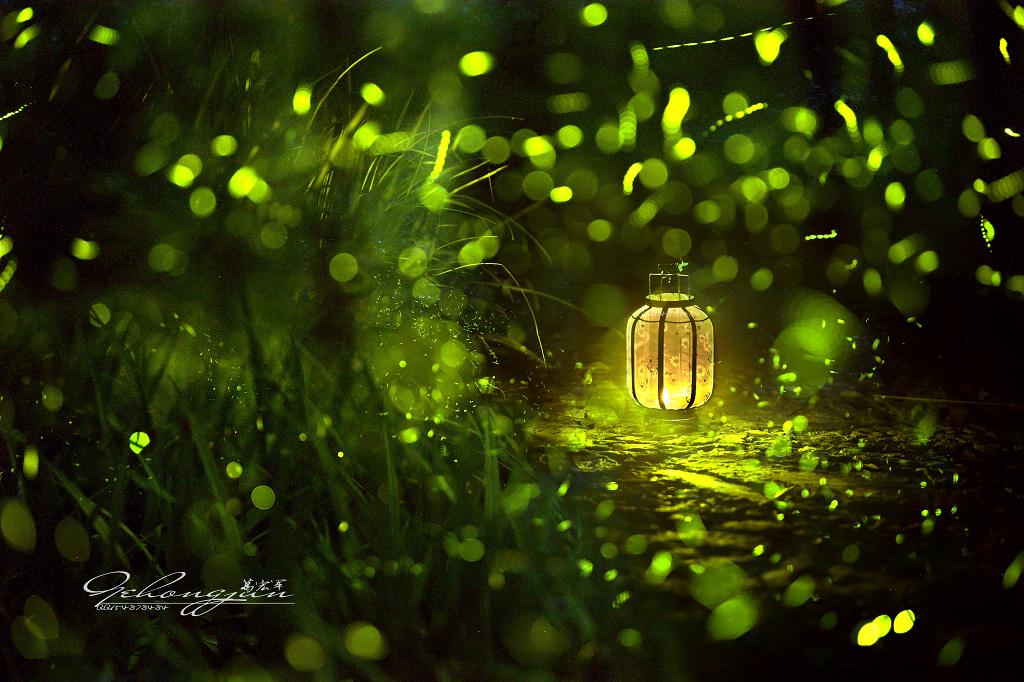 момент картинки светлячки в банке на траве правильно создавать