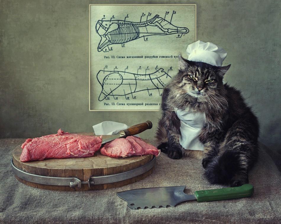 Веселые картинки с мясом, днем рождения знакомого