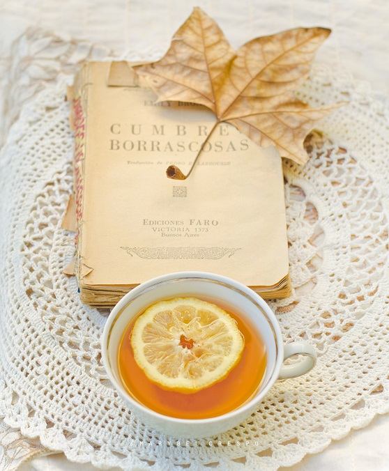 Чай с чабрецом и лимоном Рецепт с фото  Кушать нет