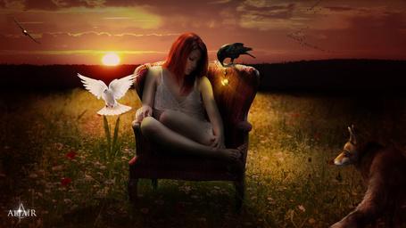 Фото Девушка сидит на кресле в окружении голубя, ворона и лисы, by Altair-E