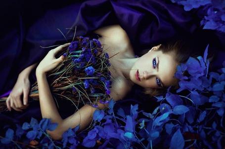 Фото Голубоглазая девушка с букетом синих цветов лежит среди таких же цветов. Фотограф Карина Чернова