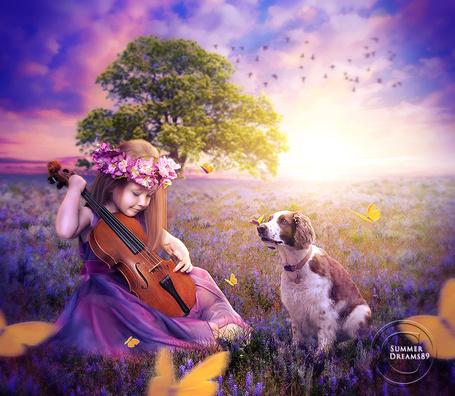 Фото Девочка со скрипкой в руках сидит на поляне рядом с собакой, в окружении желтых бабочек, by Summer Dreams89