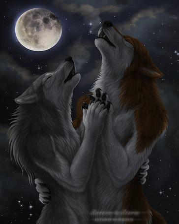 Фото Влюбленные волки на фоне полной луны, by Sidonie