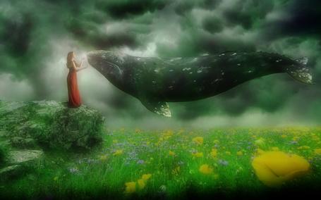Фото К девушке стоящей на краю утеса, над цветущим полем, подлетает кит, by isaskys
