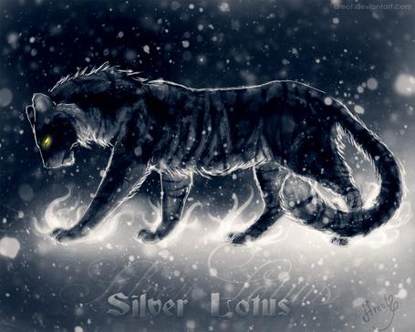 Фото Тигр со светящимися, желтыми глазами стоит под снегопадом (Silver Lotus), by Areot
