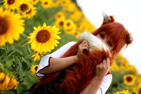 ���� ������� Horo / ���� �� ����� Spice and wolf / Ookami to Koushinryou / ������� � �������� (� chucha), ���������: 26.08.2015 00:16
