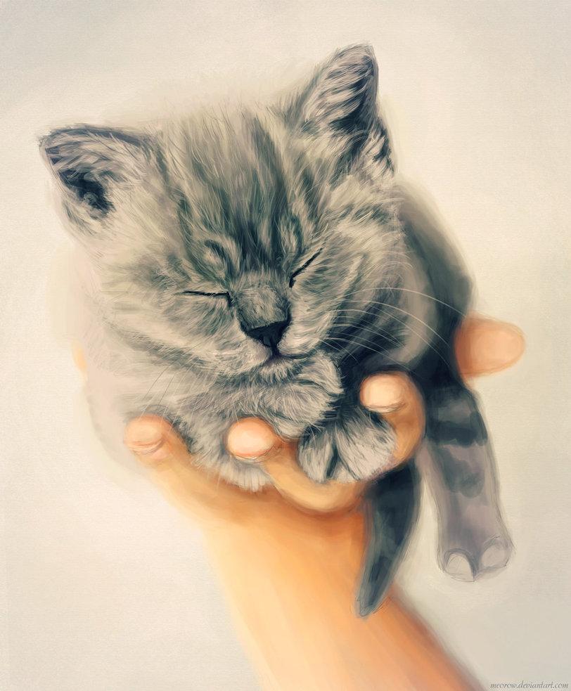 Картинки доброй ночи котенок, картинки