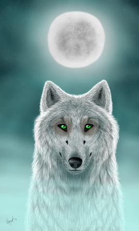 ���� ����� ���� �� ���� ������ ����, by Hum Wolf (� Arinka jini), ���������: 01.09.2015 01:15