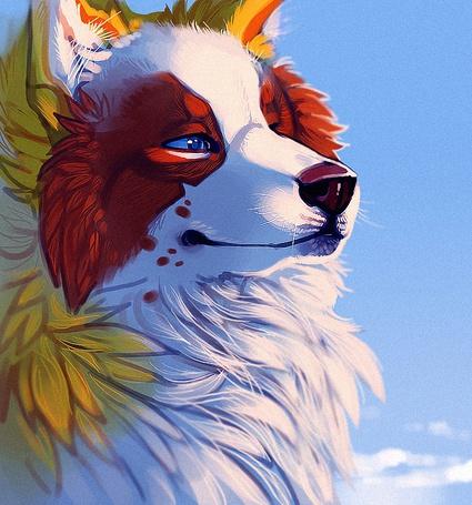 Фото Фантастический волк разноцветного окраса с голубыми глазами, стоит на фоне голубого неба, by TamberElla
