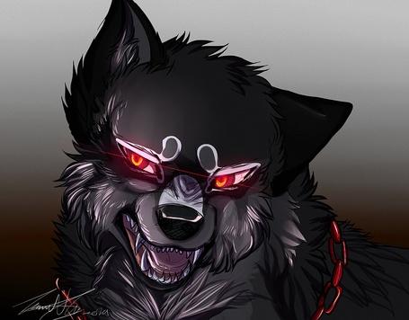 Фото Голова волка с красными глазами и красной цепью на шее, by animaldeathnote